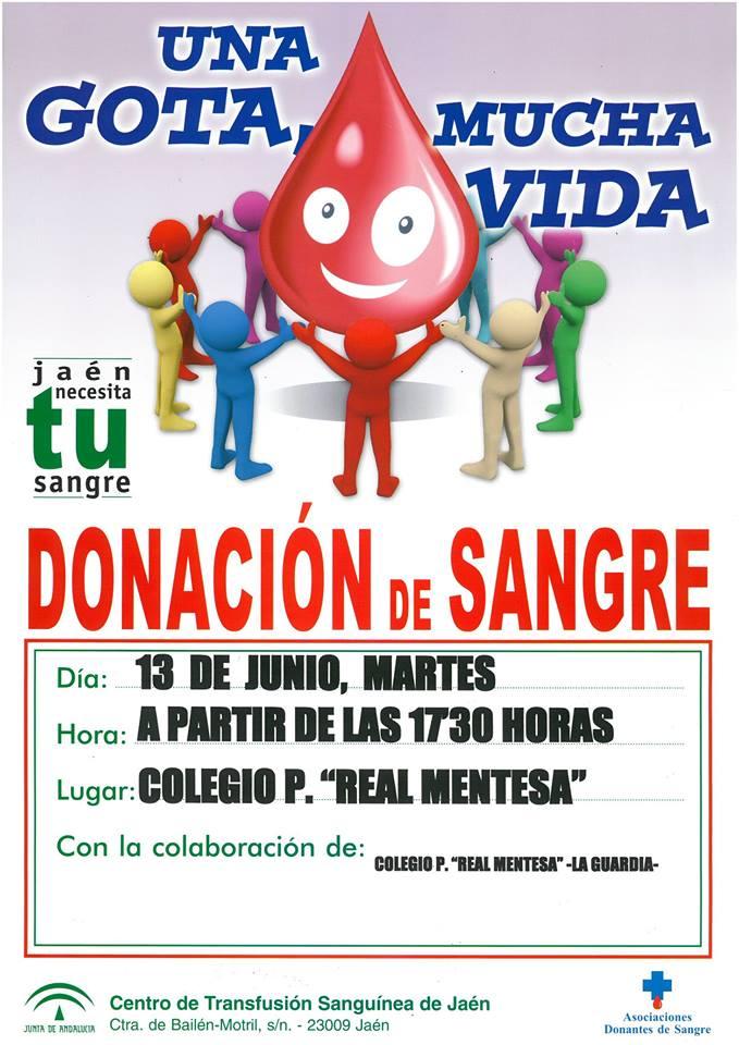 Cartel Donación de Sangre, 13 de junio