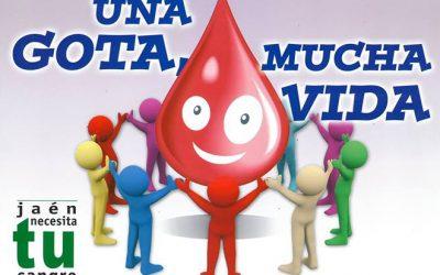 Donación de Sangre en el Colegio