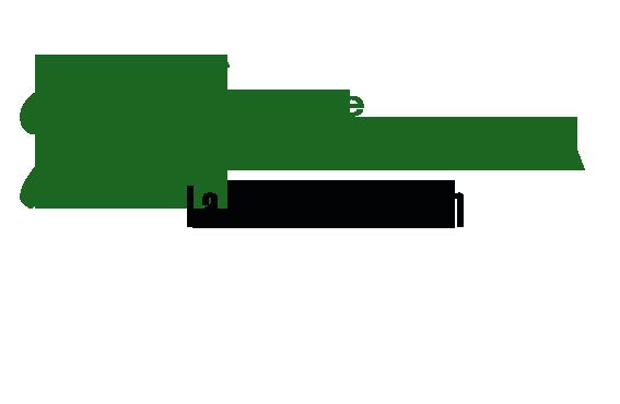 MANIFIESTO DÍA DE ANDALUCÍA 28F