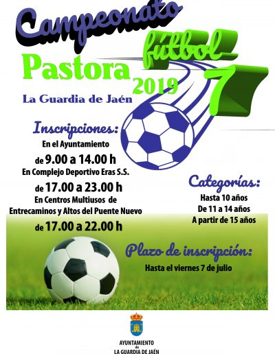 Campeonato Fútbol 7 2019